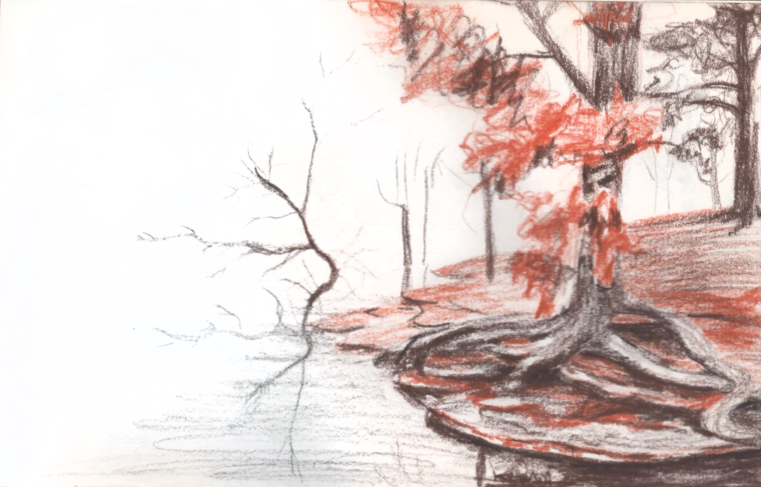 sketch27